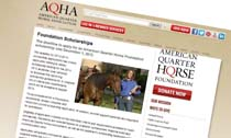 American Quarter Horse Association Scholarships